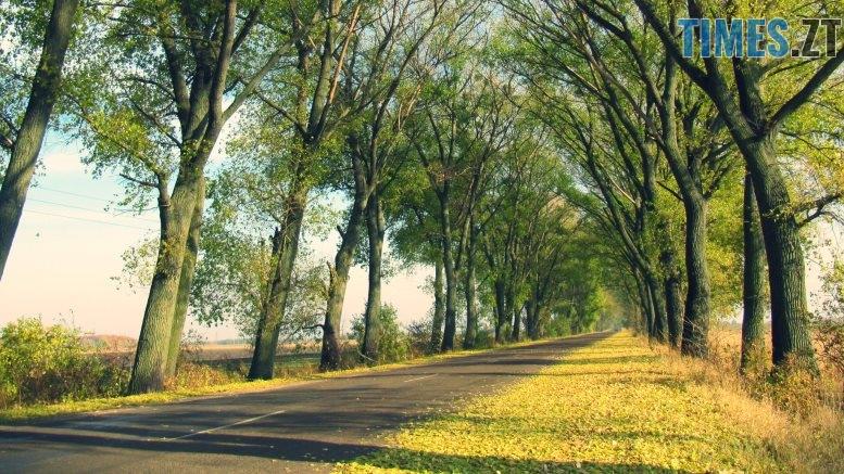 Т. Ріхтер 8 1 - Осіннє рівнодення: осінь вступила в законні права (ФОТО)