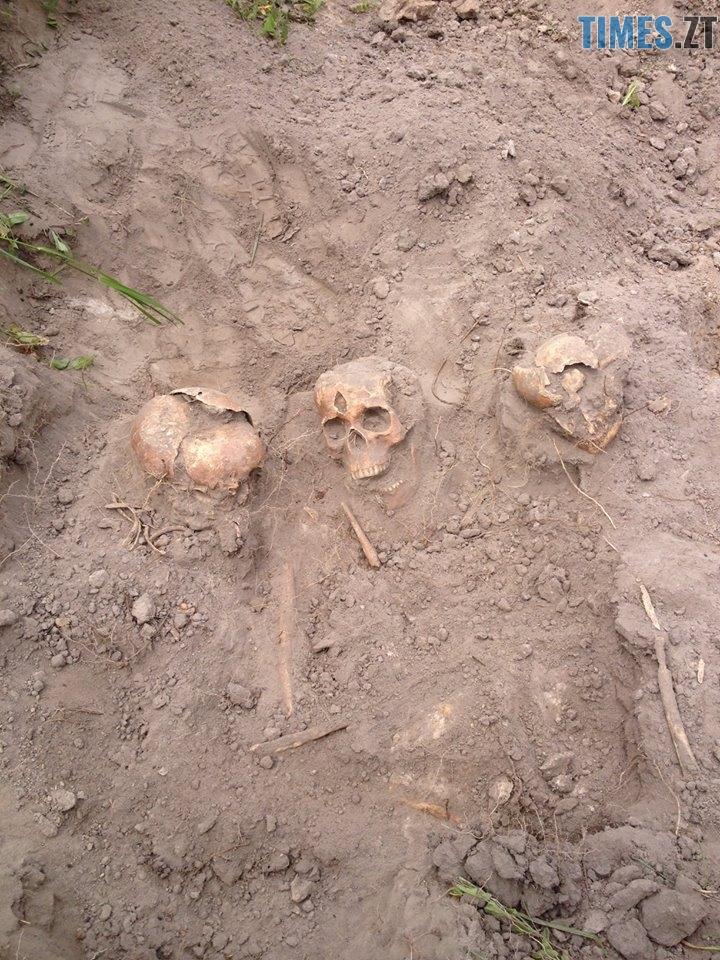 19657302 753451054826279 5211043978631803613 n - 100 років потому: в Шумську досі знаходять закатованих жертв «Червоного терору» (ФОТО)
