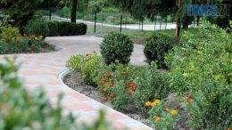 1aaaagrogroshi9 260x146 - За понад півтора мільйона гривень в Ботанічному саду відновили водойми (ФОТО)