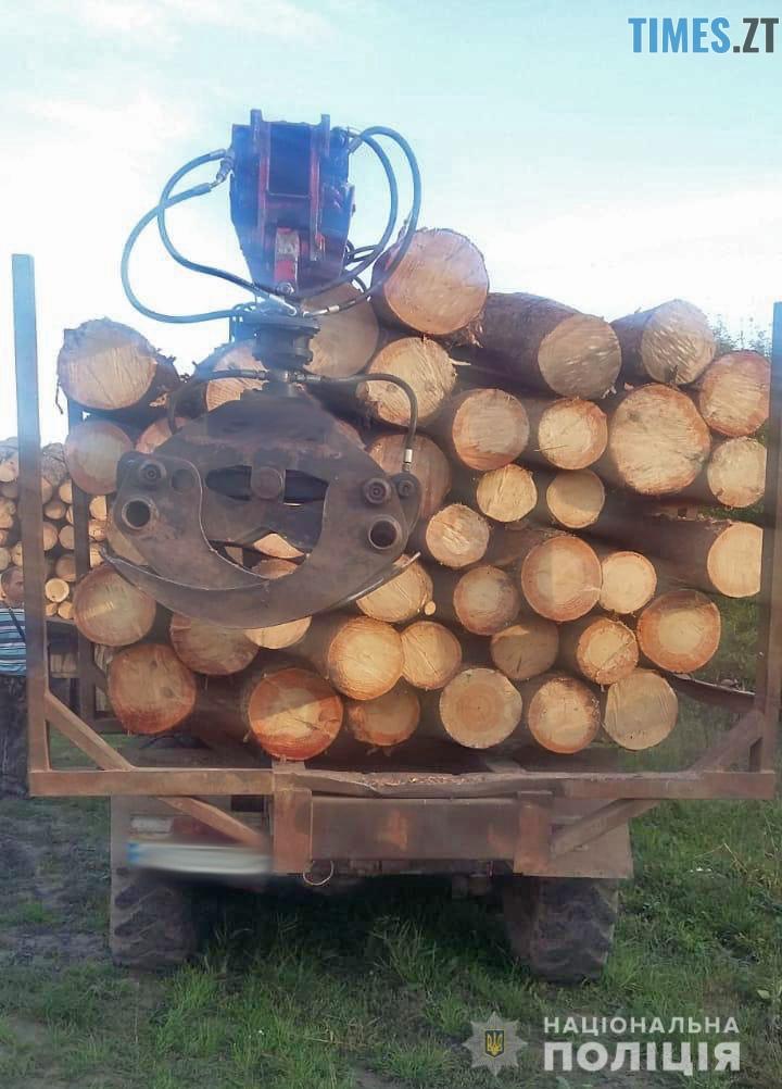 39 2 - Біля Чуднова затримали дві вантажівки з деревиною: документів у водіїв не виявили (ФОТО)