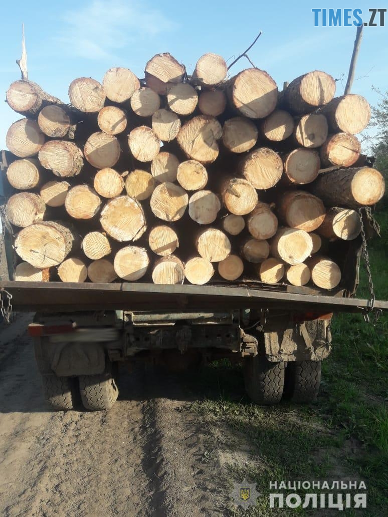 39 - Біля Чуднова затримали дві вантажівки з деревиною: документів у водіїв не виявили (ФОТО)