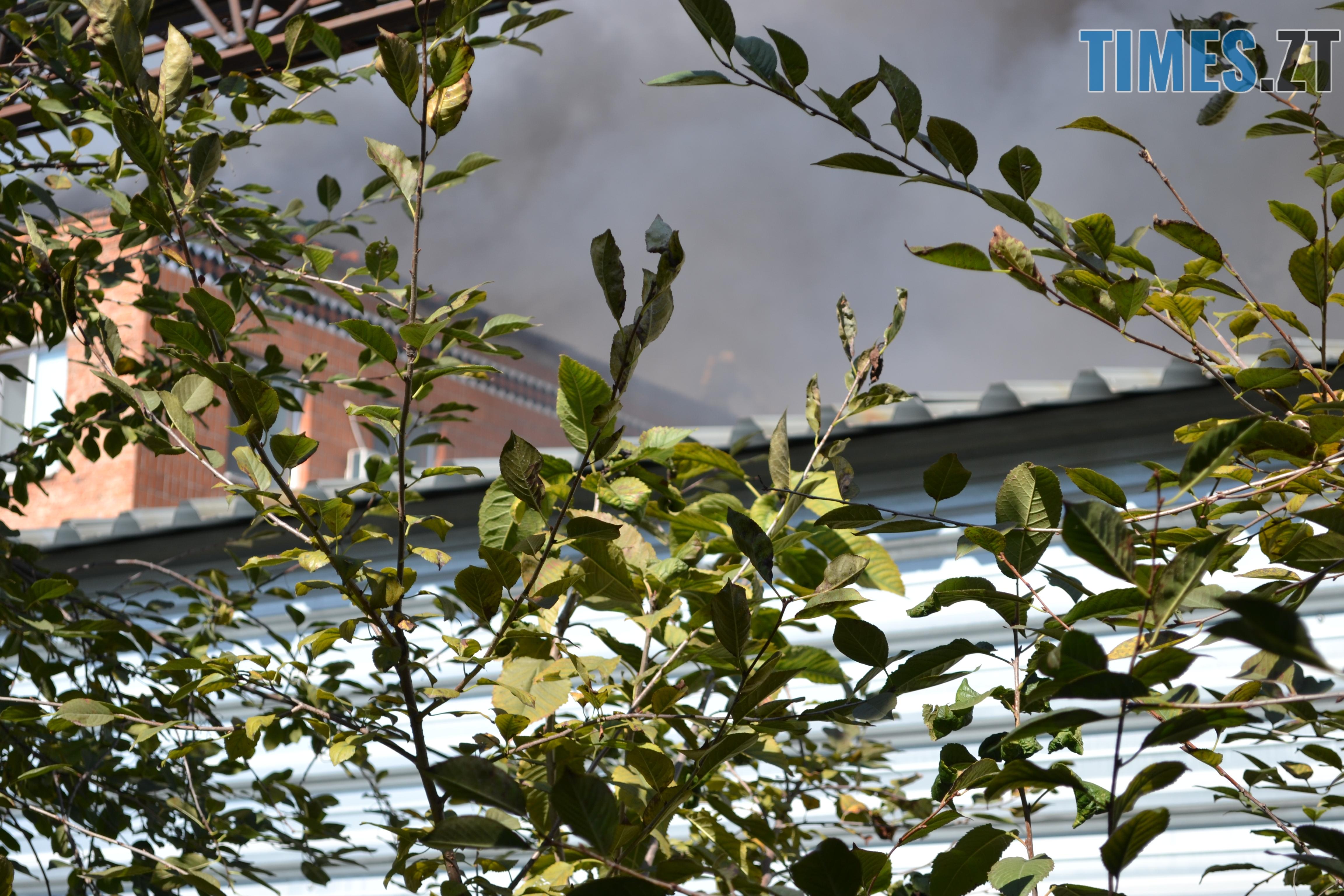 DSC 2921 - Вогонь перекинувся на адмінбудівлю Картонного комбінату: пожежу гасять 11 автомобілів та 63 пожежники (ФОТО, ВІДЕО)