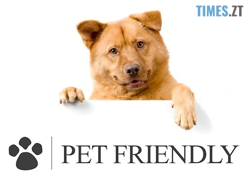 Права споживачів - В магазин з тваринами