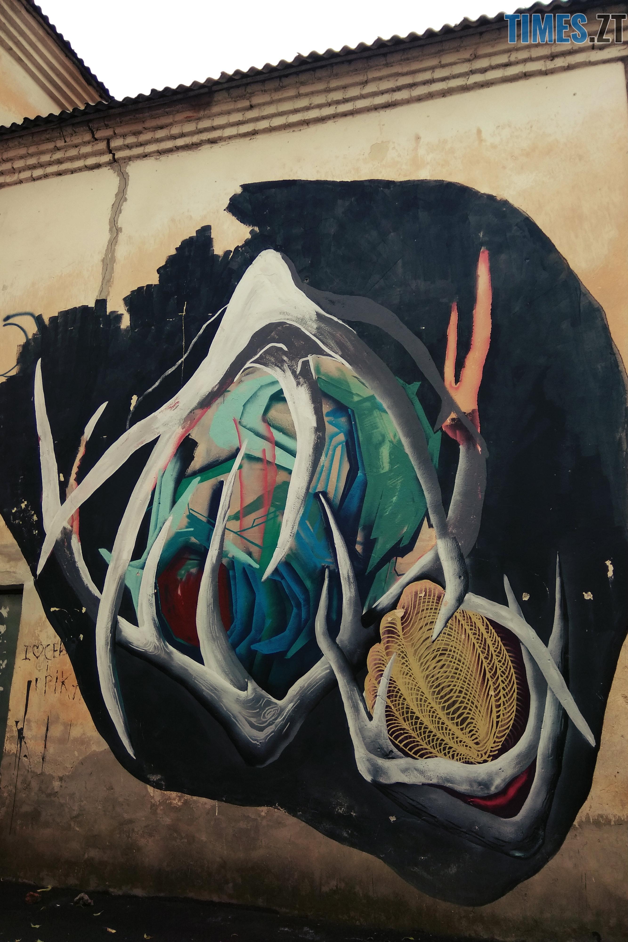4 - Місто стінописів: вуличне мистецтво, яке робить Житомир особливим (частина 1)