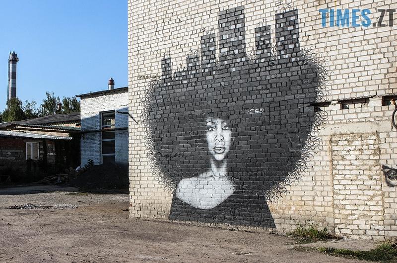 Самбо художница из Винницы зі сторінки galinaaksyenova в livejournal - Місто стінописів: вуличне мистецтво, яке робить Житомир особливим (частина 1)