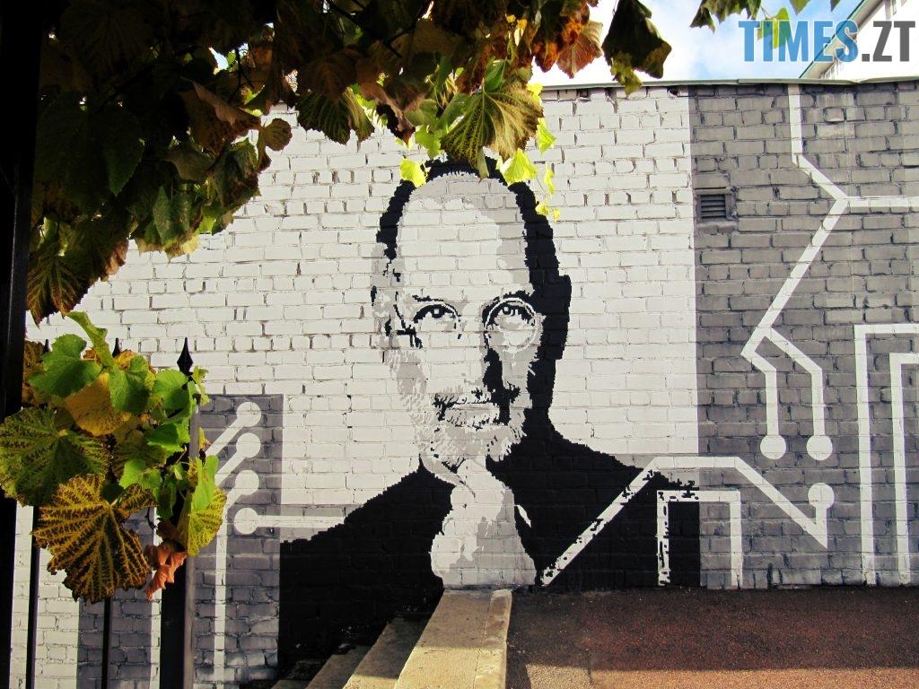. Трипільська 13 а 1024x768 - Місто стінописів: вуличне мистецтво, яке робить Житомир особливим (частина 1)
