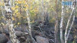 260x146 - Осінні барви: бабине літо на Житомирщині