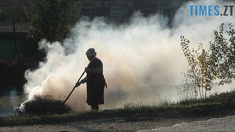 листя - Горить і димить: за спалене листя жодного житомирянина поки не оштрафували