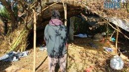 260x146 - Наркоплантатор по-бердичівськи: поліція вилучила у місцевого жителя півтонни коноплі