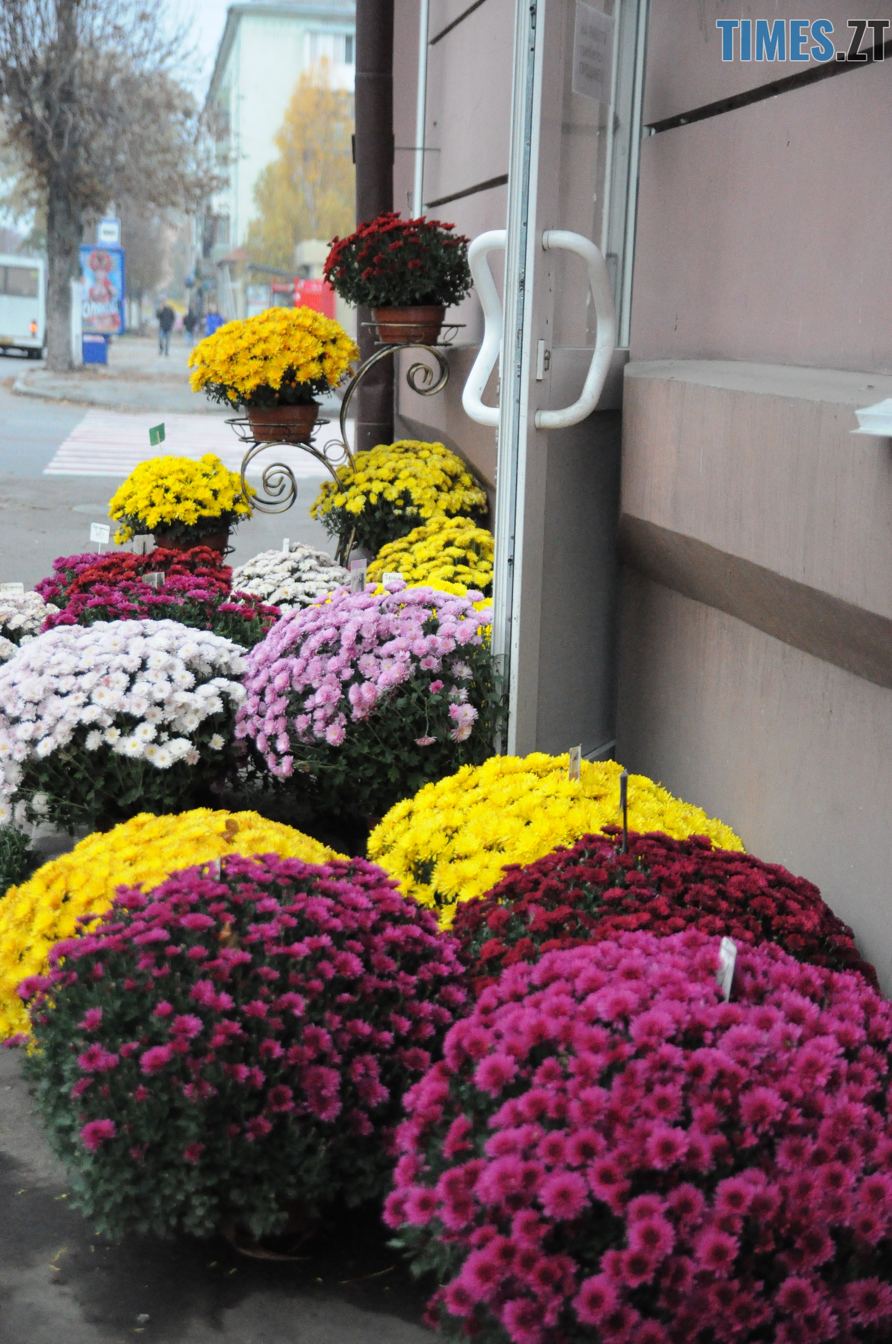 15 1 - Житомир як на долоні: форма, колір, запах цієї осені