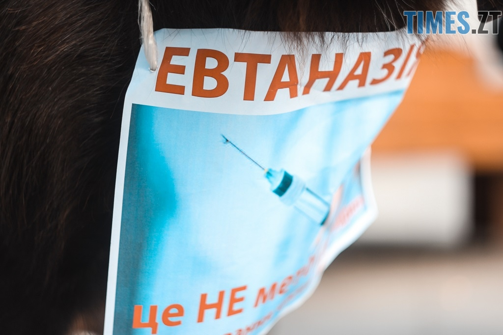 IMG 1154 - З плакатами та домашніми улюбленцями житомиряни вийшли відстоювати права тварин (ФОТОРЕПОРТАЖ)