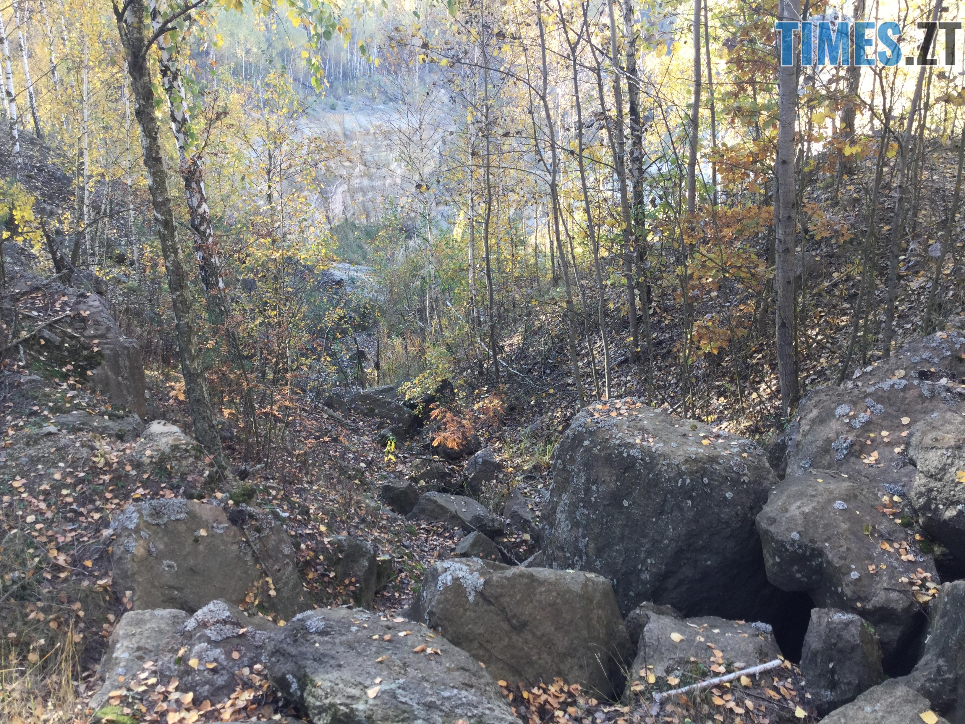 IMG 1161 1 - Осінні барви: бабине літо на Житомирщині