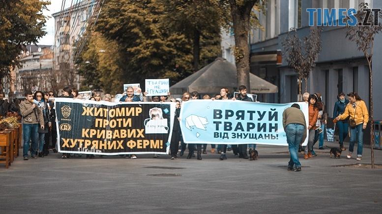 IMG 1214 - Протистояння петицій: житомиряни розділилися на тих, хто закликає відмовитися від контактних зоопарків та цирків з тваринами і тих, хто хоче їх повернути