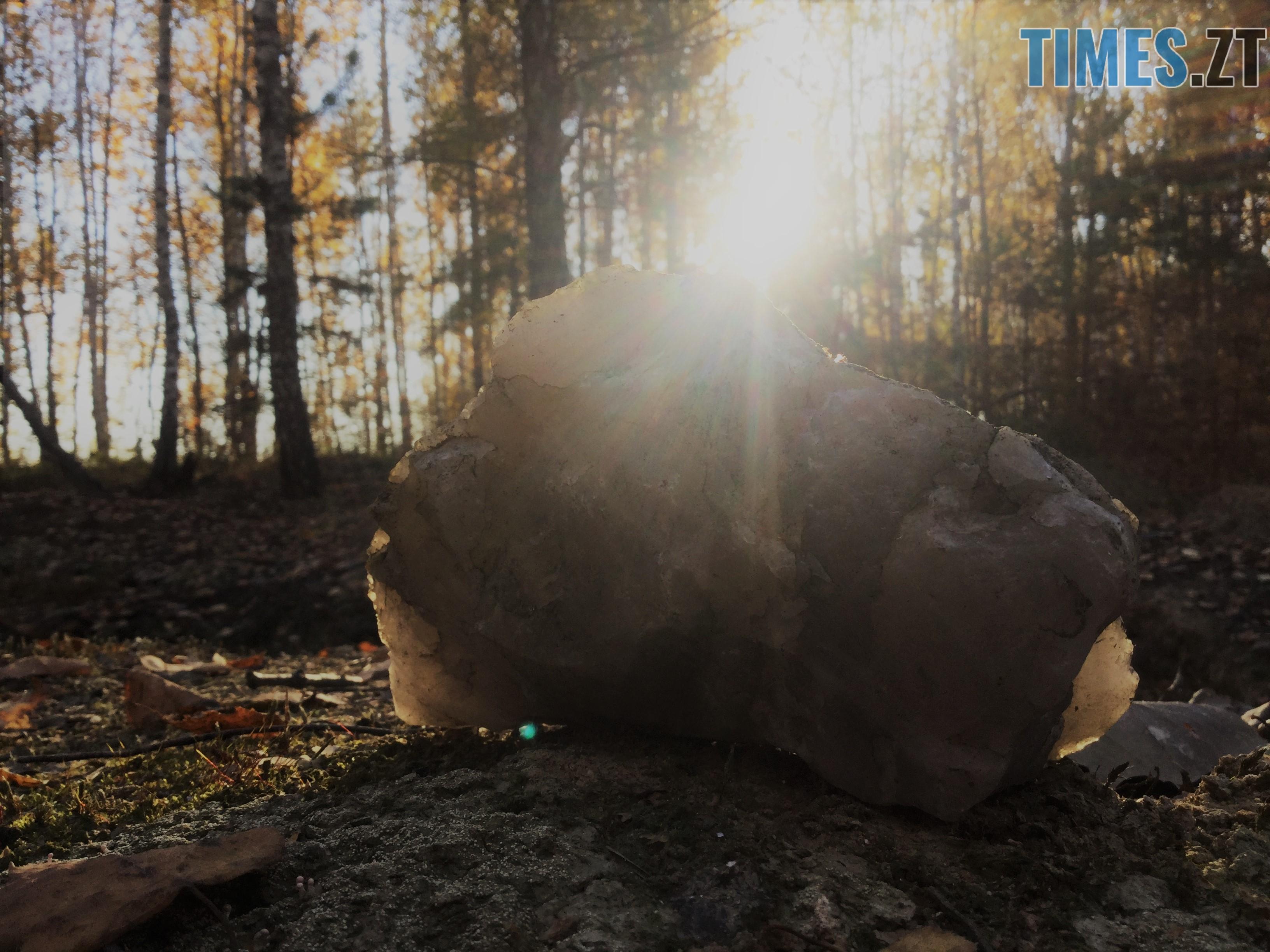 IMG 1317 - Осінні барви: бабине літо на Житомирщині