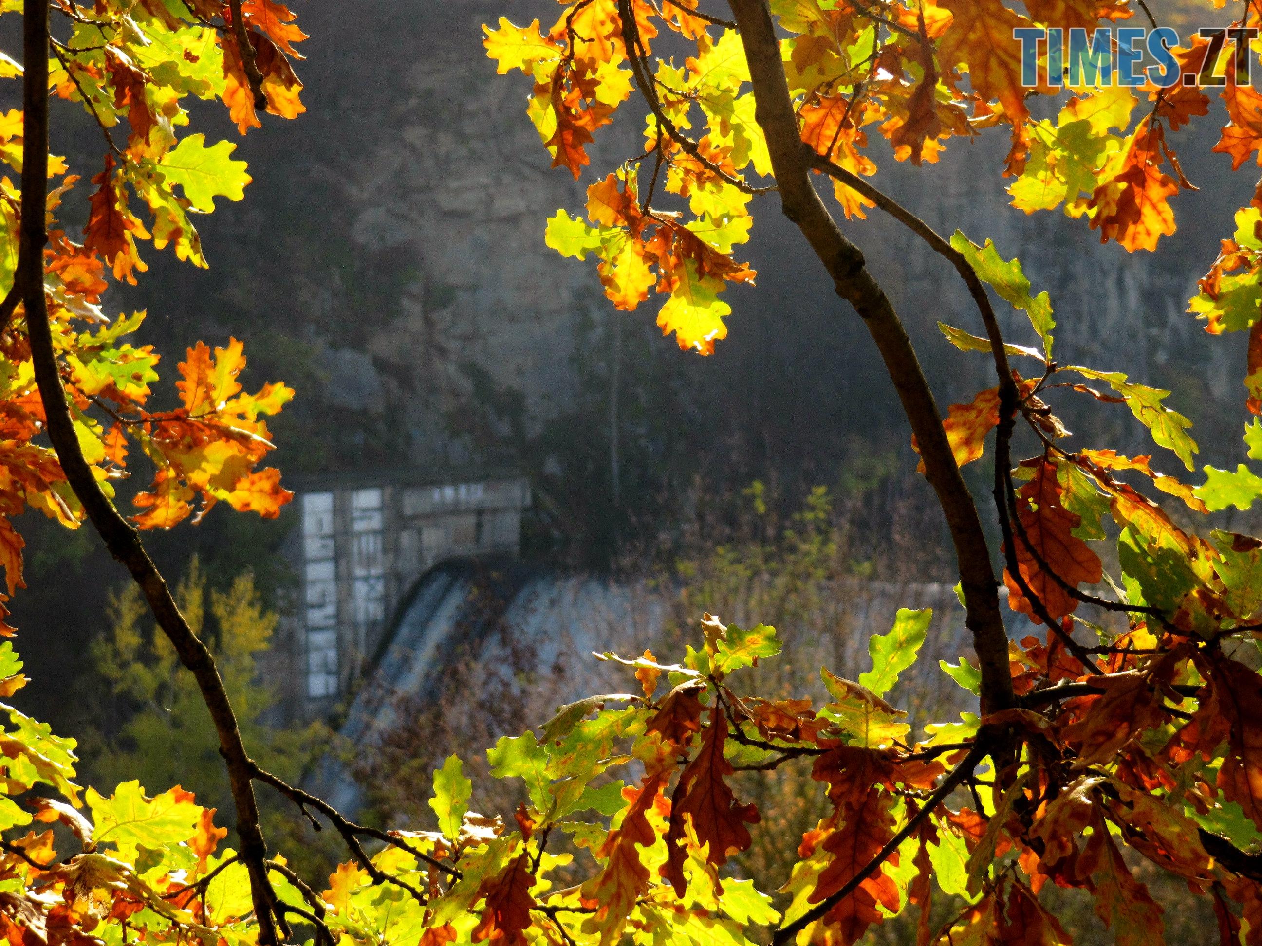 IMG 7158 1 - Осінній Житомир: місто в деталях