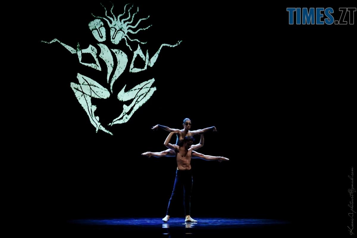 img 5548 web - Мистецтво як благодійність: кошти за квитки на балетну виставу «Діти Ночі» перерахують на лікування онкохворих дітей