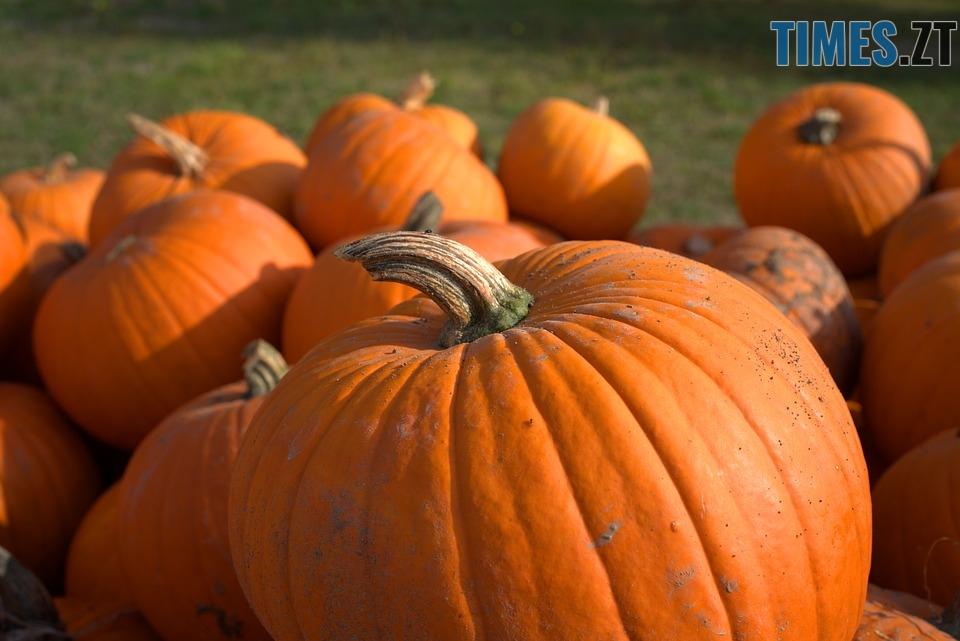 pumpkin 3738398 960 720 - Halloween, Геловін або День всіх святих: історія, традиції та цікаві факти