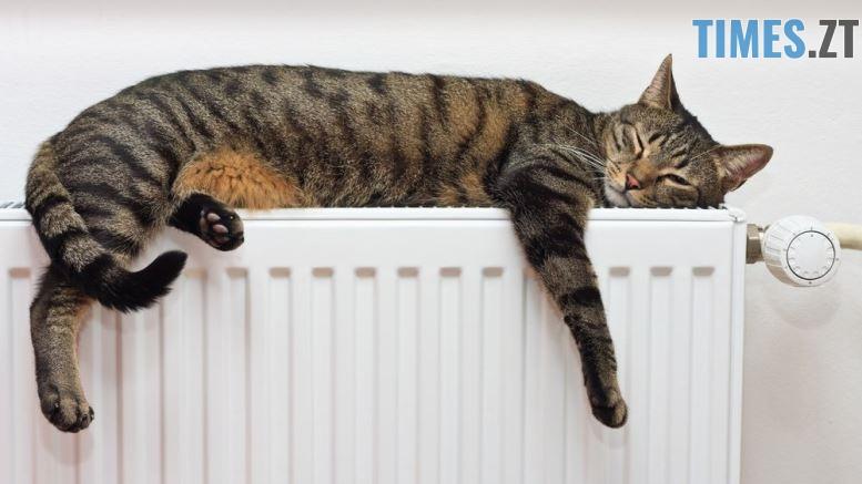 tmb 143927 7119 - На скільки та чому підніметься вартість теплопостачання у Житомирі