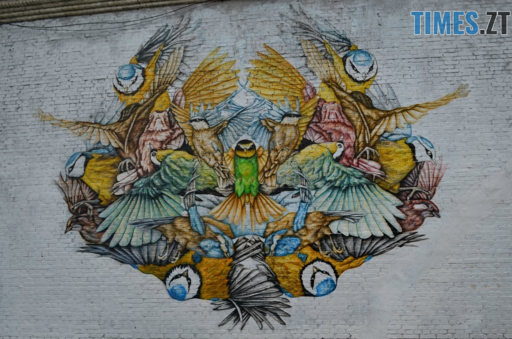.Бердичівська 45 2 1024x679 - Місто стінописів: вуличне мистецтво, яке робить Житомир особливим (спецвипуск 2)