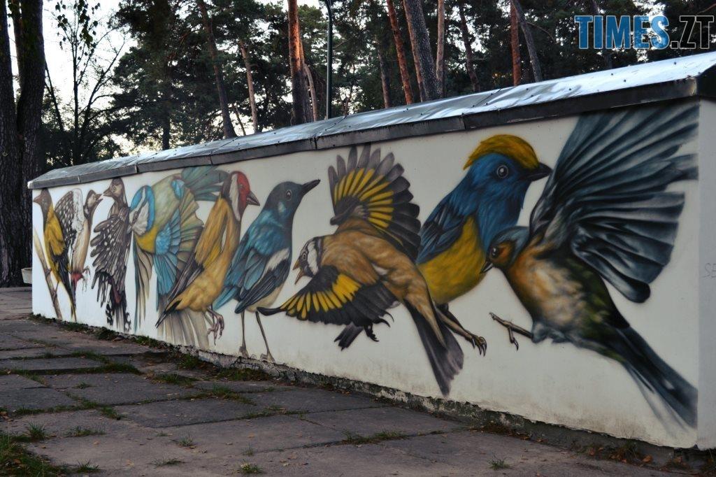 1024x682 - Місто стінописів: вуличне мистецтво, яке робить Житомир особливим (спецвипуск 2)