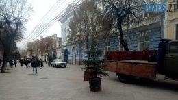 ялинки 260x146 - Встановлять ялинки та сяючі парасольки: у Житомирі почали підготовку до новорічних свят