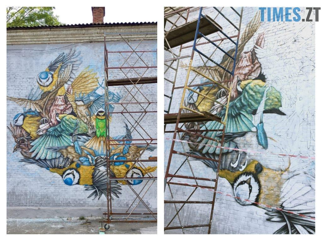 G5 1024x768 - Місто стінописів: вуличне мистецтво, яке робить Житомир особливим (спецвипуск 2)