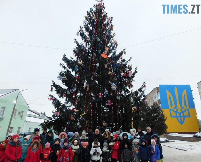 1 - Як виглядають новорічні ялинки у різних районах Житомирської області