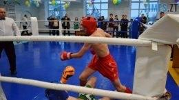 1 на головну 260x146 - У Житомирі відбувся чемпіонат міста з кікбоксингу WAKO «Українська шляхта»