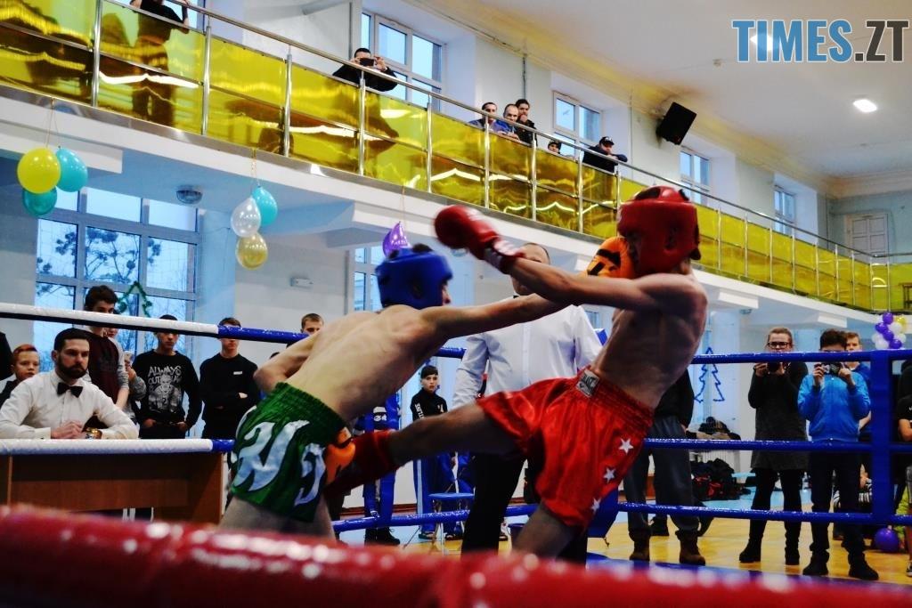 11 1024x683 - У Житомирі відбувся чемпіонат міста з кікбоксингу WAKO «Українська шляхта»