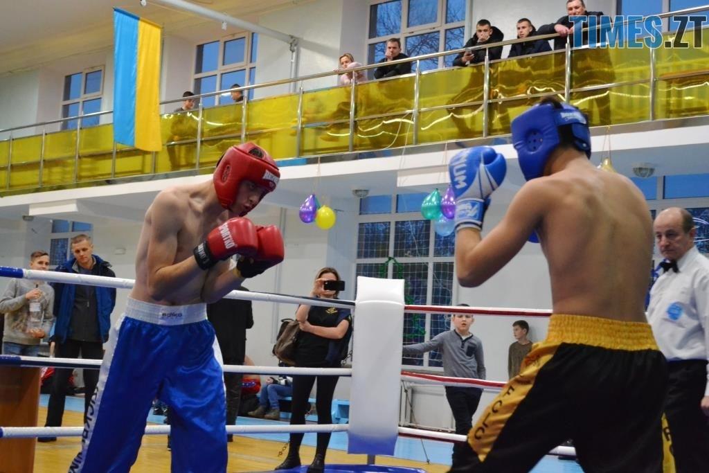 15 1024x683 - У Житомирі відбувся чемпіонат міста з кікбоксингу WAKO «Українська шляхта»