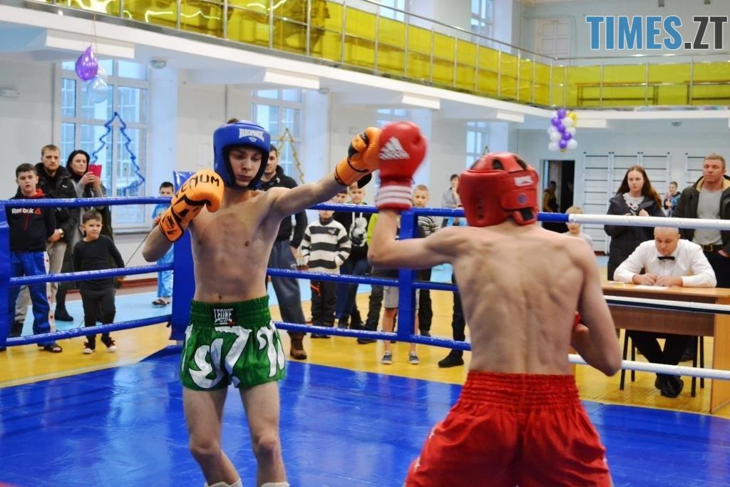 5 1024x683 - У Житомирі відбувся чемпіонат міста з кікбоксингу WAKO «Українська шляхта»