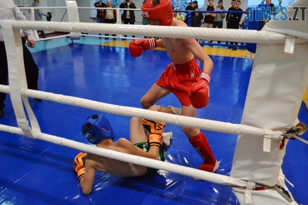 9 1024x683 - У Житомирі відбувся чемпіонат міста з кікбоксингу WAKO «Українська шляхта»