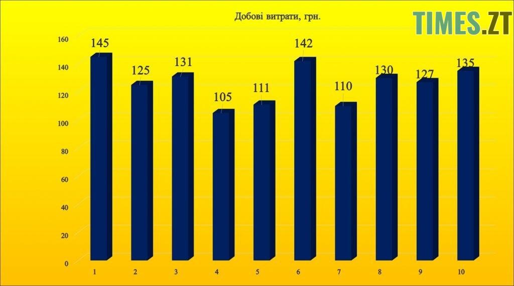 Photo 4 1024x571 - Чи реально прожити на «мінімалку» в Житомирі: експеримент