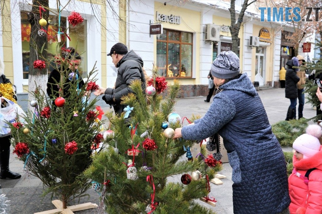 img1545213777 1 1024x683 - Через «мертві» ялинки на Михайлівській житомиряни погрожують влаштувати акцію протесту