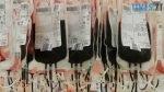 blood bags 91170 1280 150x84 - «Ланцюг милосердя» у Житомирі: бійці АТО долучилися до здачі крові для онкохворих дітей