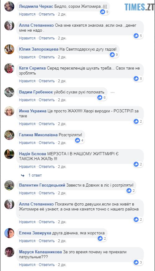 1 - Житомирянку, яка пошкодила плакат з зображенням Героя України, затримали
