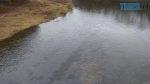 52637238 2271898879756049 669975487556091904 n 150x84 - Екологи зафіксували забруднення вод річки Тетерів нафтопродуктами