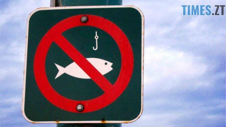 5be03a1e69512454899483 820x360 777x437 - З квітня на Житомирщині через нерест заборонений вилов риби та раків