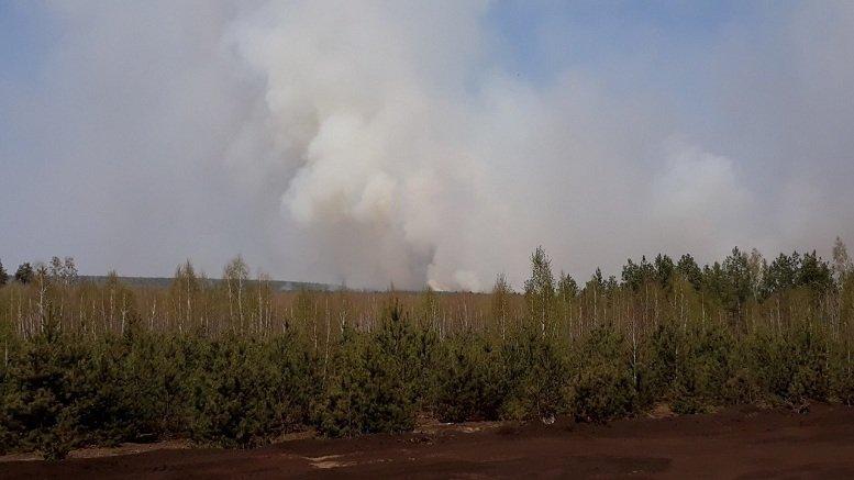 33E8A736 91AA 4003 89F2 B0549A7635A9 - Вогнеборці  Житомирщини залучили до гасіння лісової пожежі авіацію