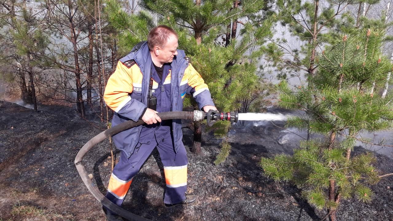 IMG 124bf7f - На Житомирщині триває боротьба з лісовими пожежами. Залучено авіацію
