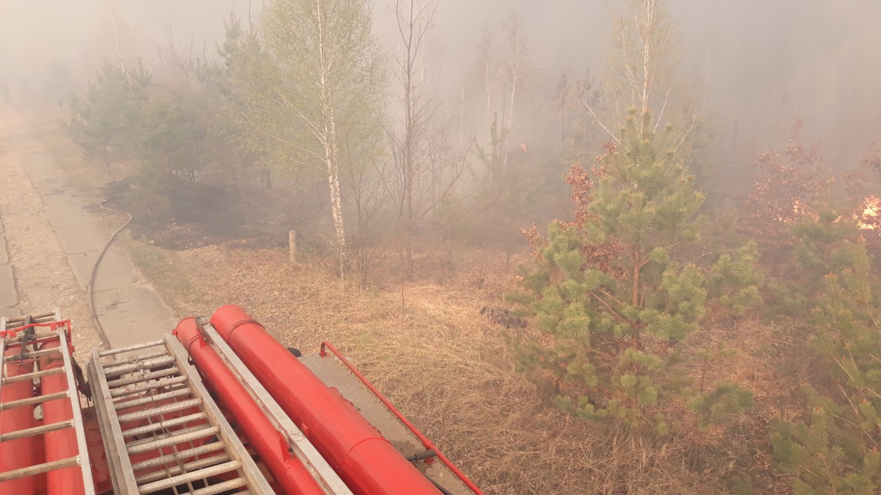 IMG 706e3 - На Житомирщині триває боротьба з лісовими пожежами. Залучено авіацію