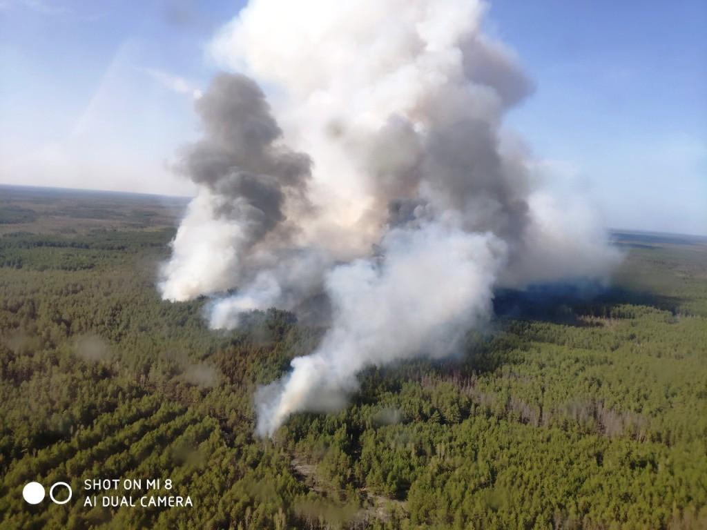 IMG 7c4d30b39f18487d03920a01878f682a V - На Житомирщині триває боротьба з лісовими пожежами. Залучено авіацію