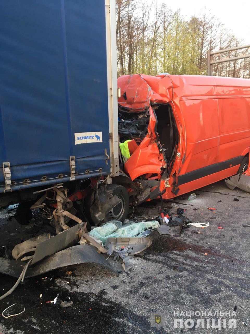index4 - Поява лося на дорозі призвела до смертельного ДТП на Житомирщині