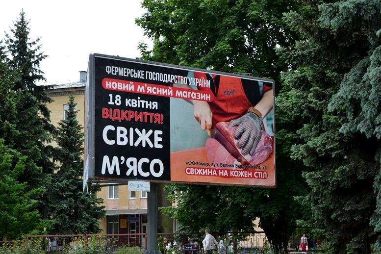 DSC 0627 - «Трупи рекламують!» Мешканців Житомира дратує бридка соціальна реклама (ФОТО)