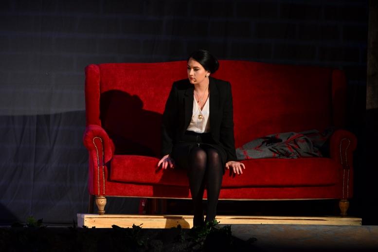 DSC 0887 Kopyrovat 1 - В Бердичеві відбулась ювілейна вистава «Фріда» за участі її автора Марини Гримич