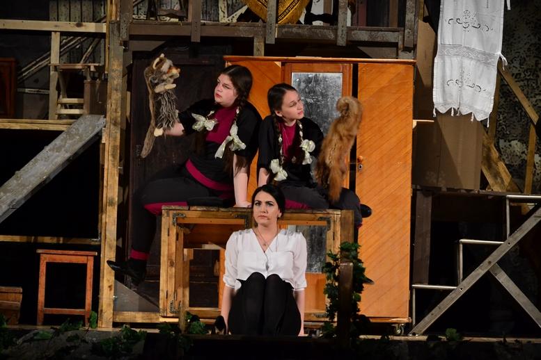 DSC 0964 Kopyrovat - В Бердичеві відбулась ювілейна вистава «Фріда» за участі її автора Марини Гримич