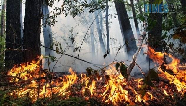 630 360 1531136664 9247 - До уваги мешканців Житомирщини: у регіоні оголосили високий рівень пожежної небезпеки