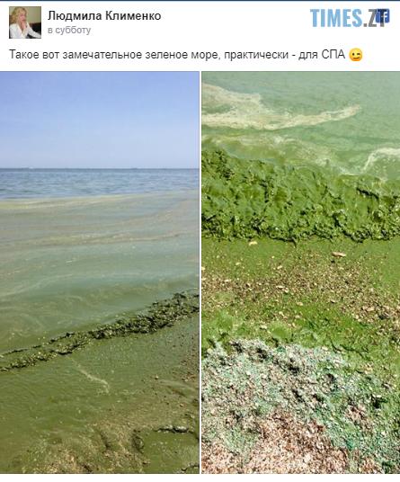 """Screenshot 20 1 - Відпустка на межі зриву: житомирян попереджають про """"екологічну катастрофу"""" на чорному морі (ФОТО)"""