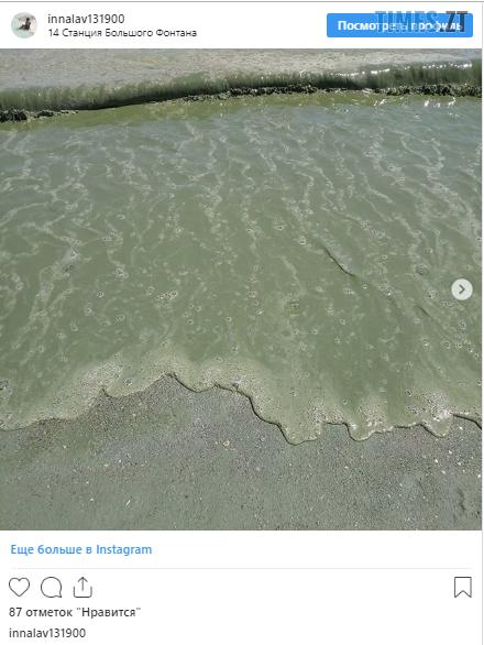 """Screenshot 22 1 - Відпустка на межі зриву: житомирян попереджають про """"екологічну катастрофу"""" на чорному морі (ФОТО)"""
