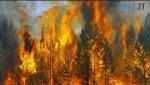 Screenshot 63 150x85 - Житомирщину накриє аномальна спека